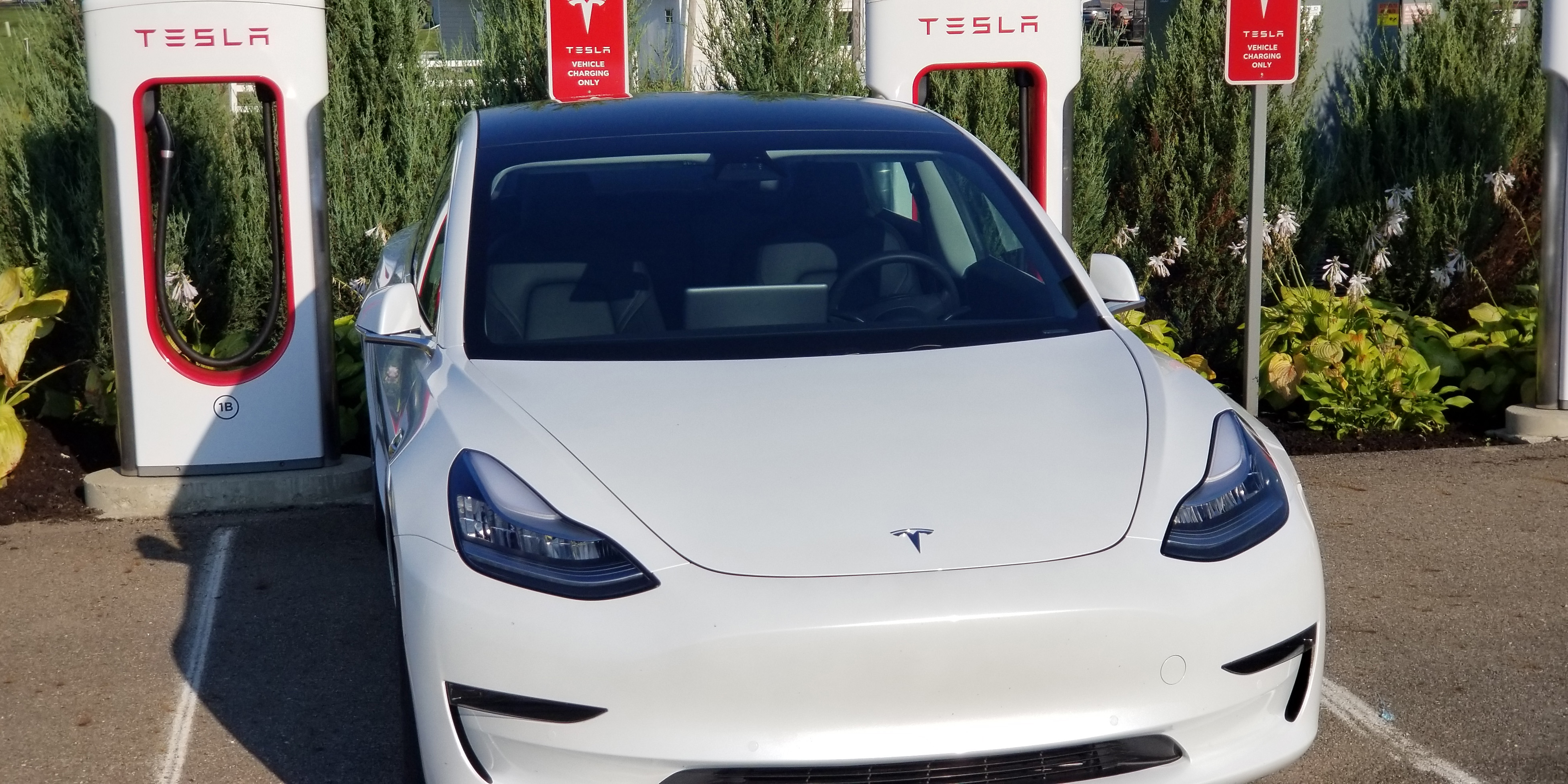 Why Drive Electric Vehicles